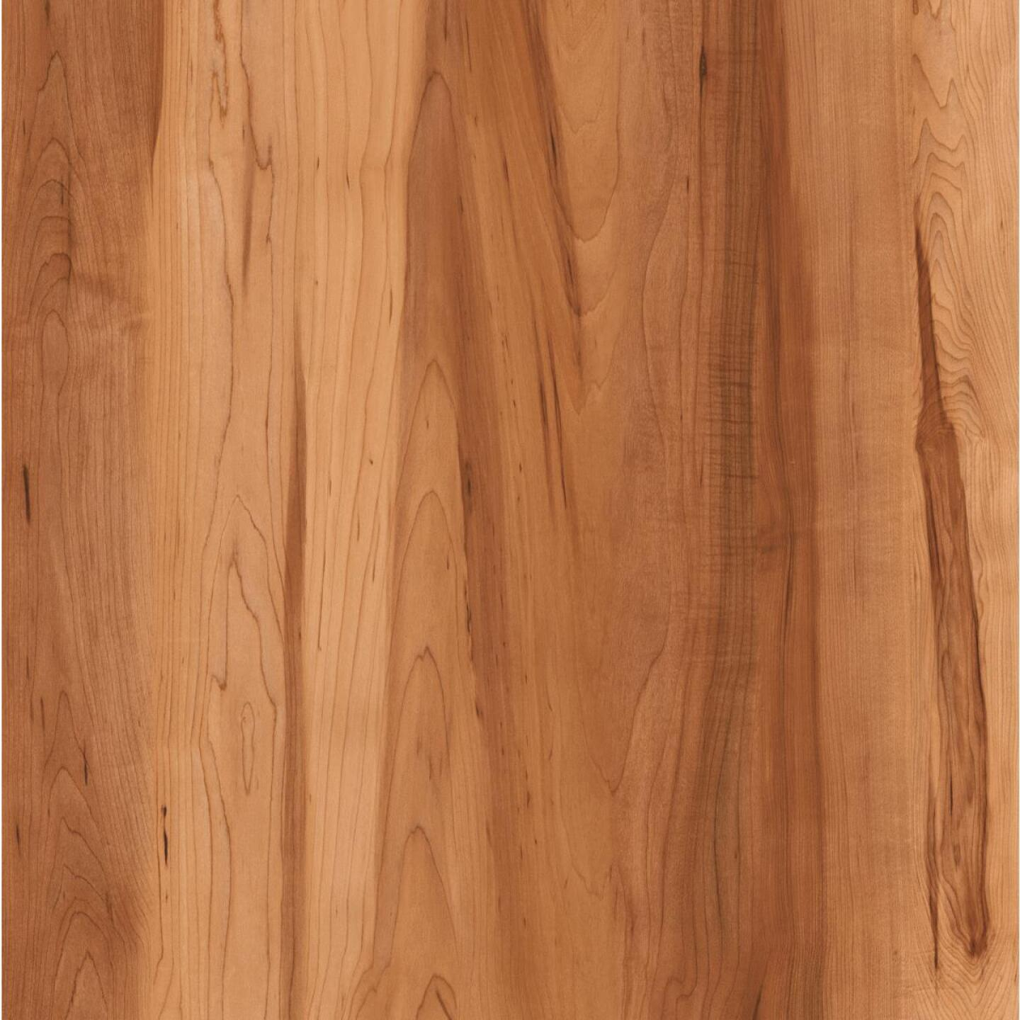 Balterio Right Step Ruby Maple 5.28 In. W x 49.72 In. L Laminate Flooring (21.86 Sq. Ft./Case) Image 1