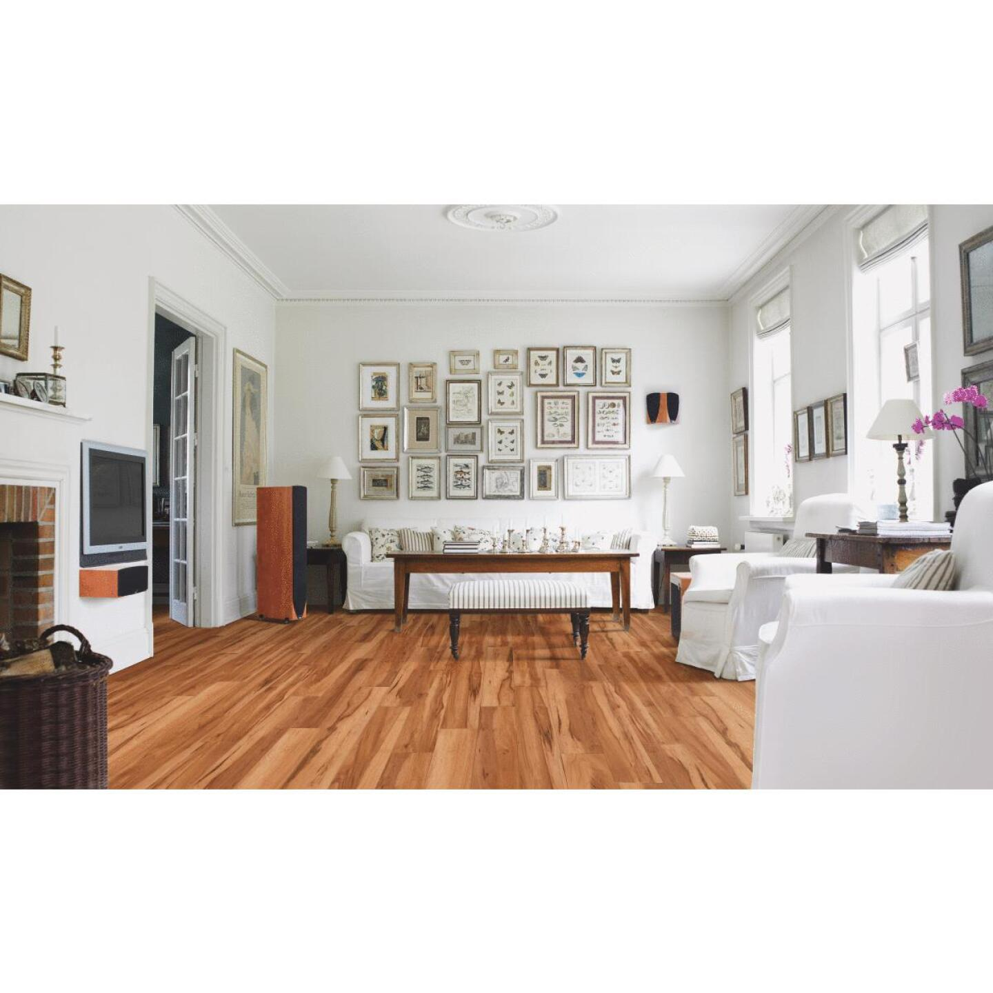 Balterio Right Step Ruby Maple 5.28 In. W x 49.72 In. L Laminate Flooring (21.86 Sq. Ft./Case) Image 2